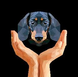 DWZ 23sec 2 handen met hond
