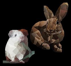 GEZ 3sec 4 konijn en cavia