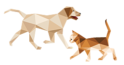 GEZ 3sec 5 hond en kitten